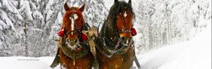 Święta Bożego narodzenia Wigilia w górach